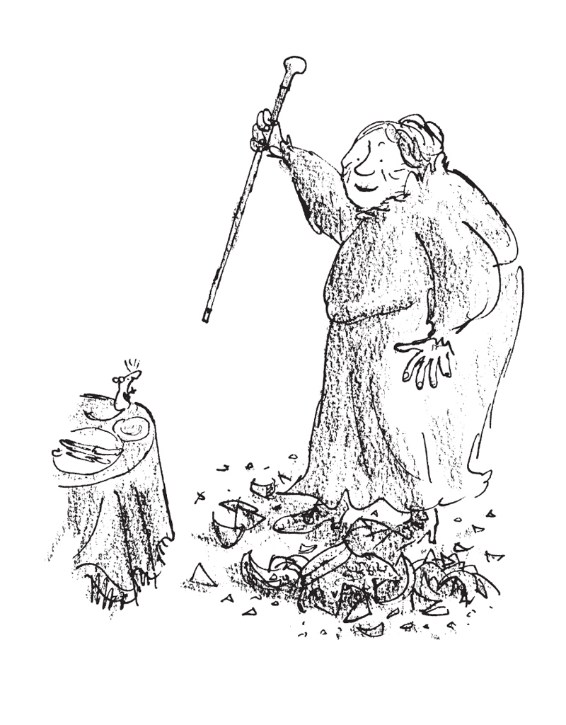 the witches roald dahl macmillan