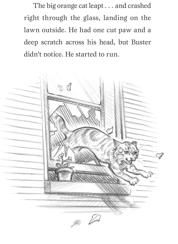 Missing A Cat Called Buster Wendy Orr Macmillan border=