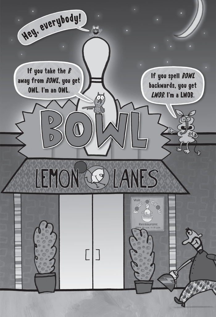 Interior book image for Bowling Alley Bandit