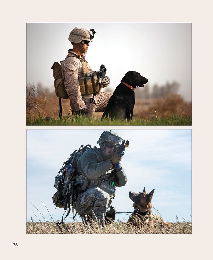 Soldier dog ebook best deal gallery free ebooks and more dogs who serve lisa rogak macmillan military working dogs have played a vital role in the fandeluxe Choice Image