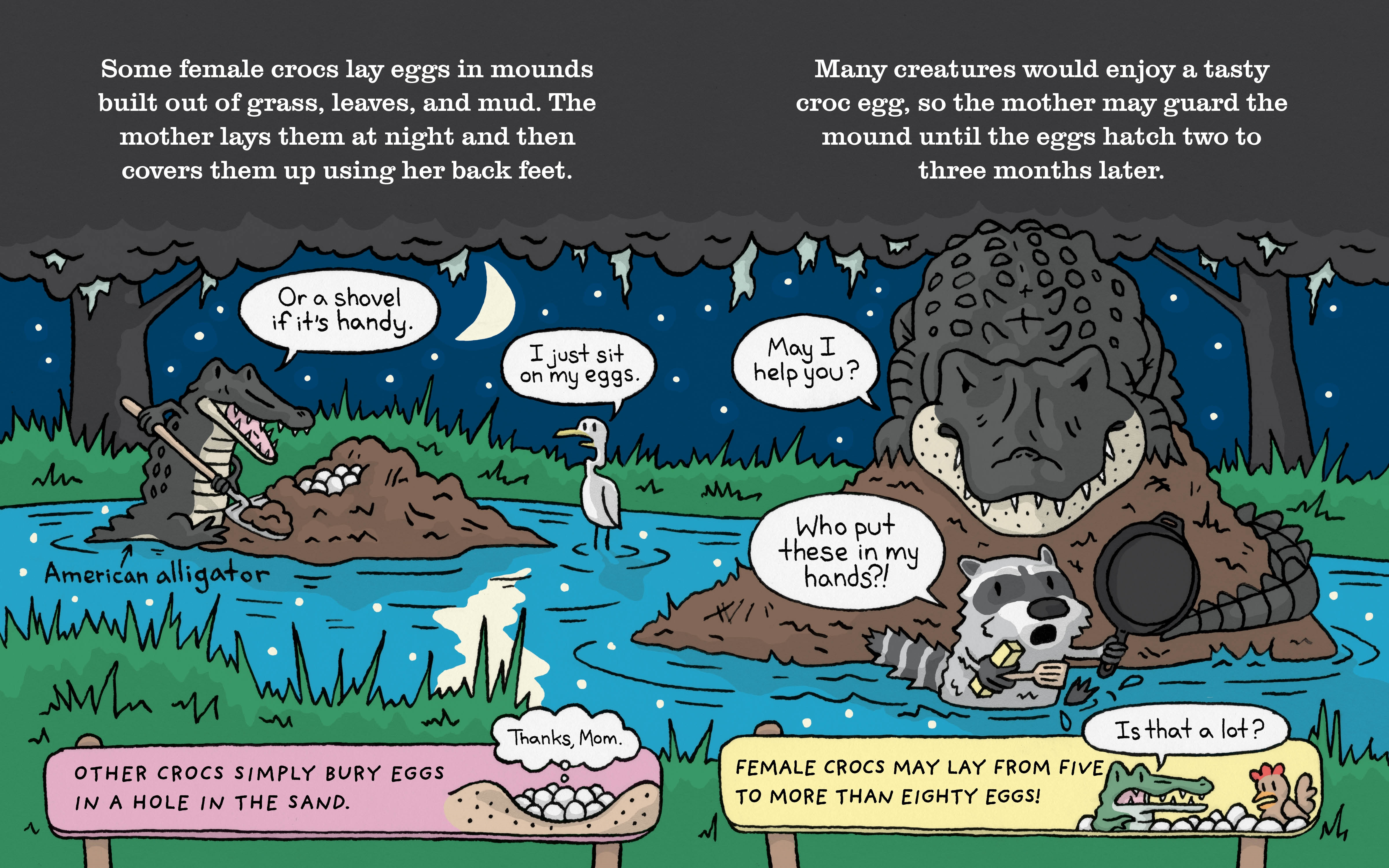 Interior book image for The Truth About Crocodiles