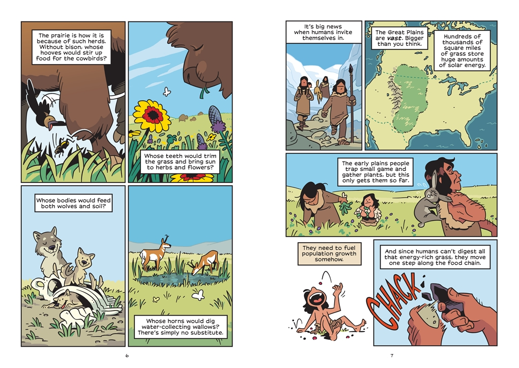 Interior book image for History Comics: The American Bison