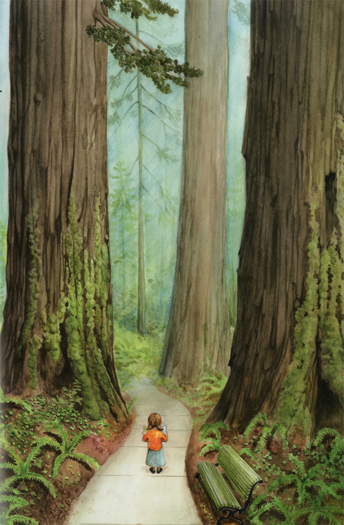 Interior book image for Redwoods