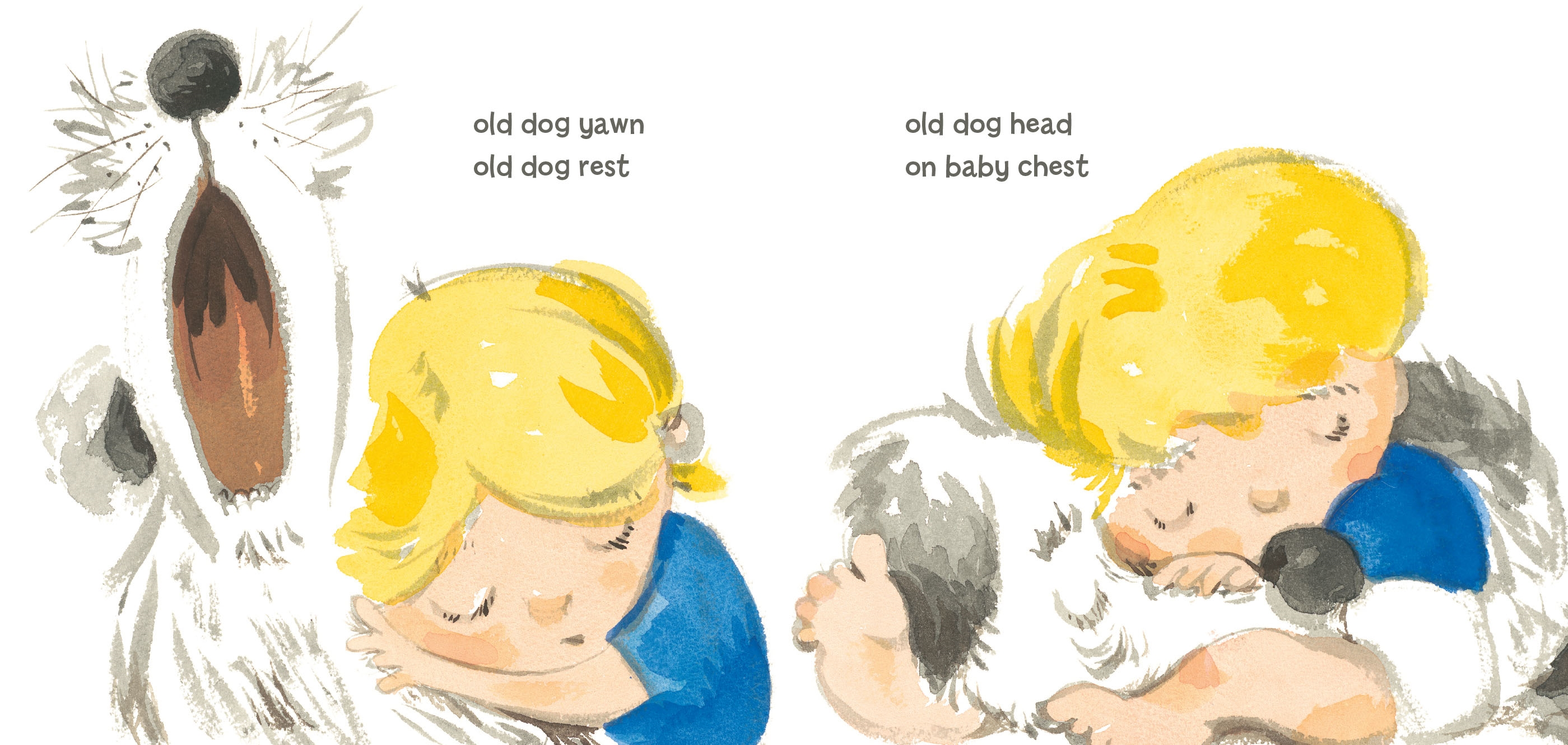Interior book image for Old Dog Baby Baby