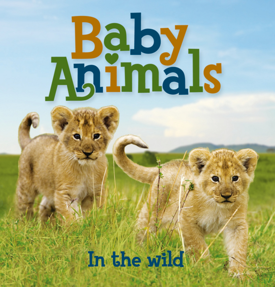 Baby Animals In the Wild