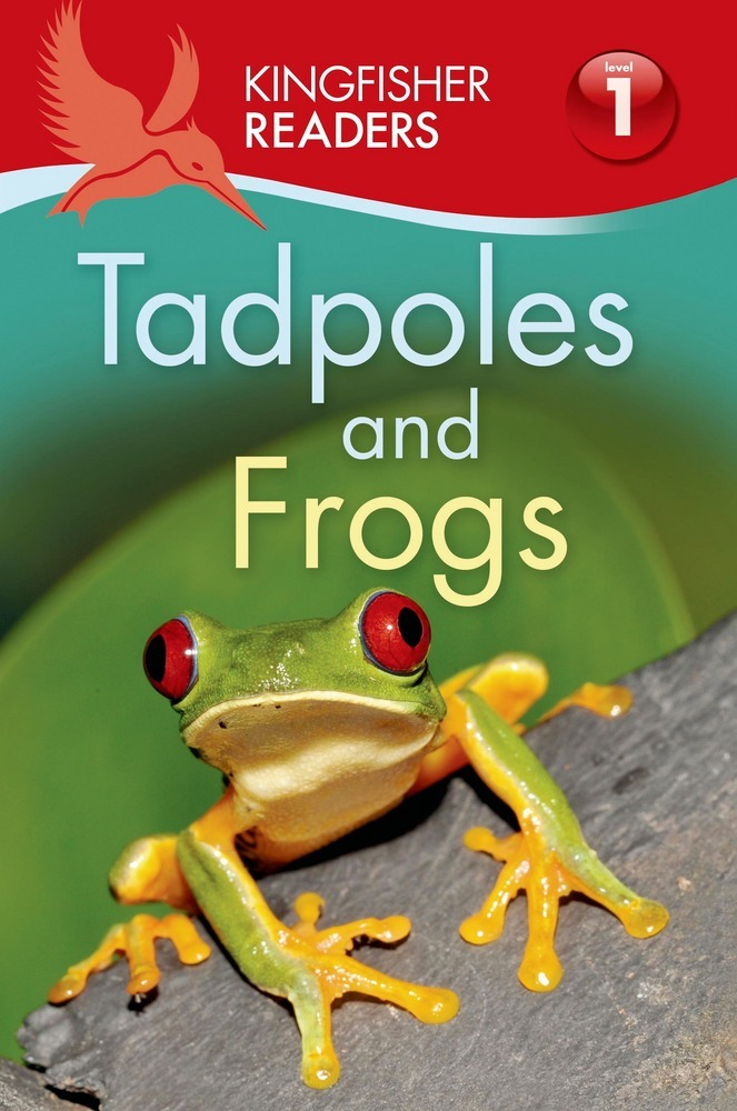 Kingfisher Readers L1: Tadpoles and Frogs