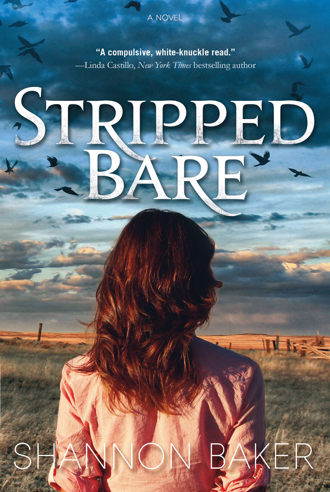 Stripped Bare by Shannon Baker