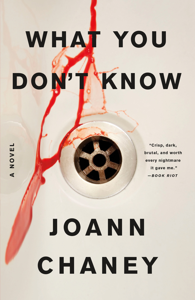 What You Don't Know by JoAnn Chaney