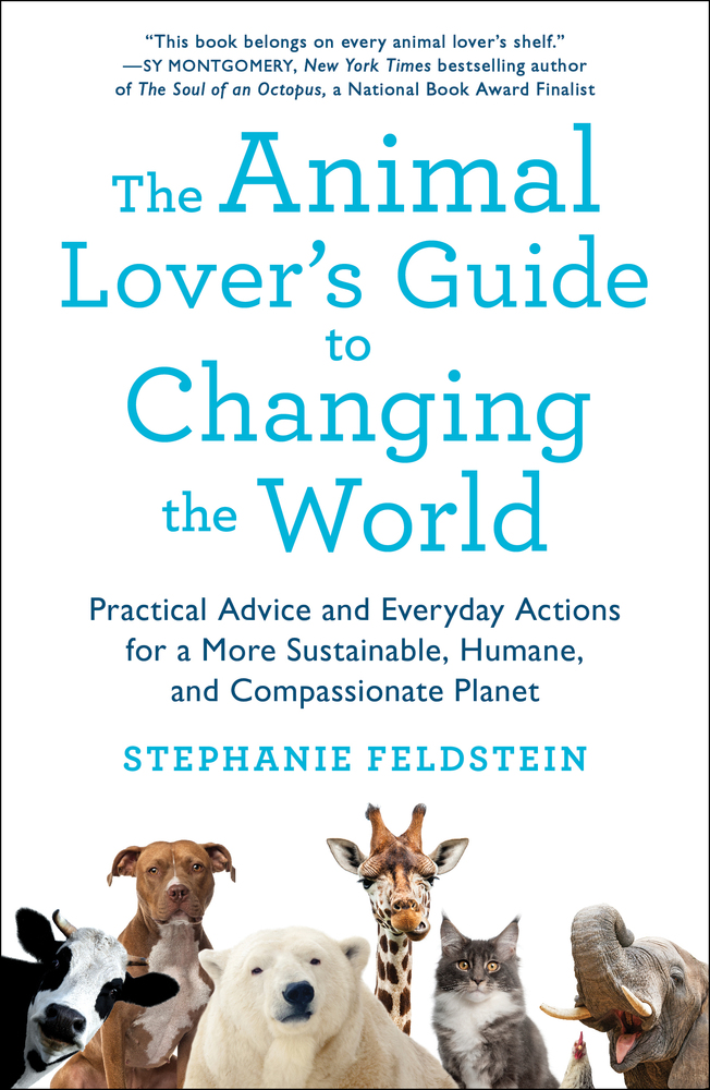 The Animal Lover's Guide to Changing the World