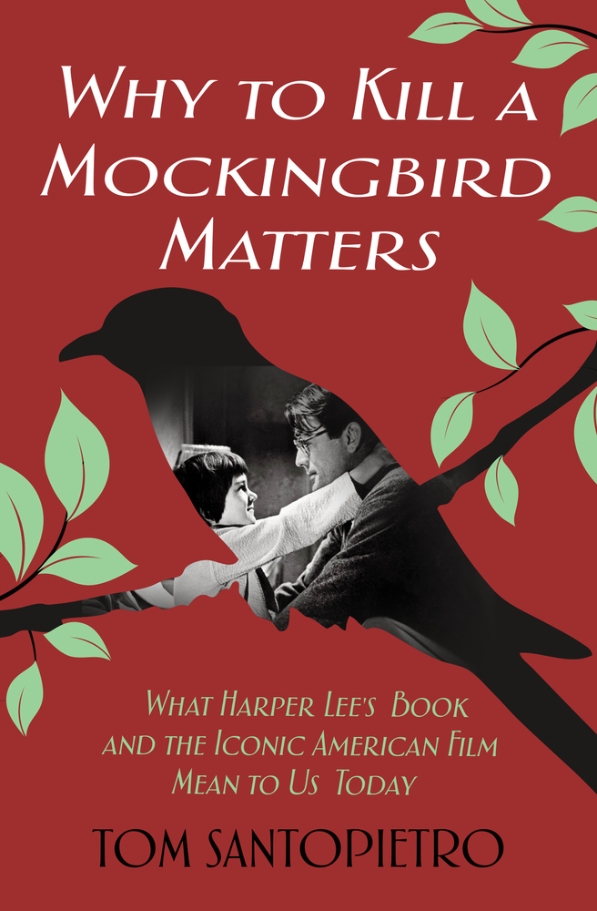 whats to kill a mockingbird about