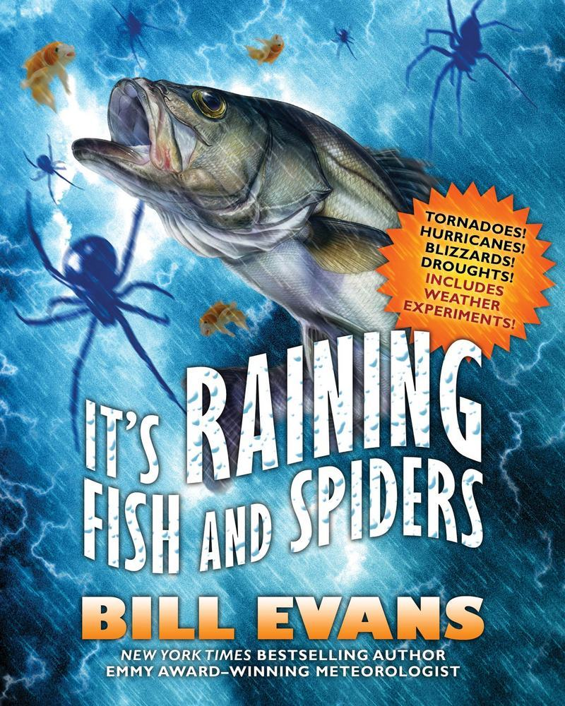 It's Raining Fish and Spiders