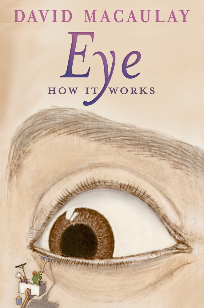 Eye: How It Works