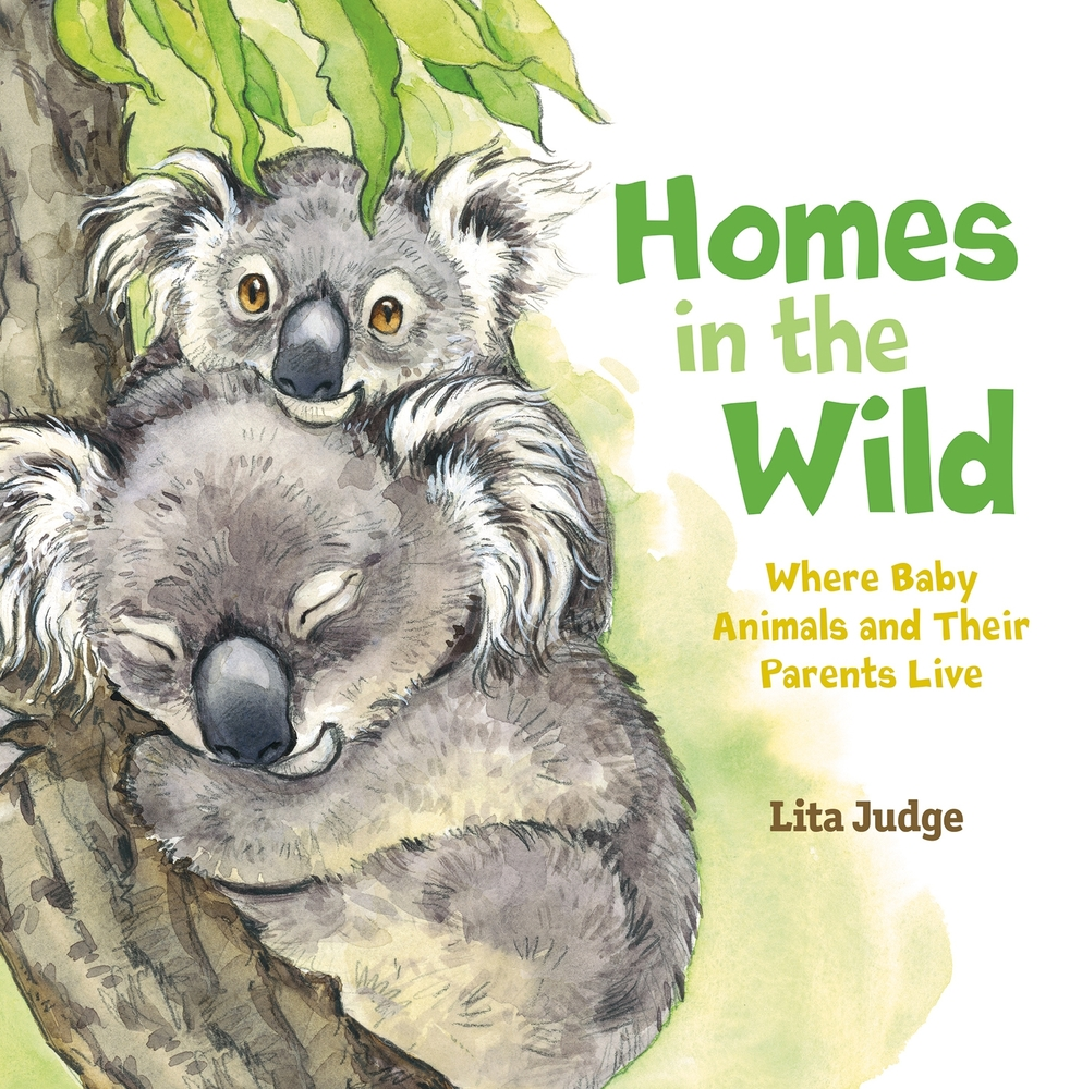 Image result for homes in the wild judge