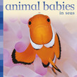 Animal Babies in Seas