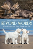 Beyond Words: What Wolves and Dogs Think and Feel (A Young Reader's Adaptation)