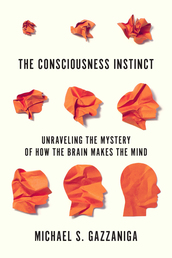 The Consciousness Instinct Book Cover - Click to open Coming Soon panel