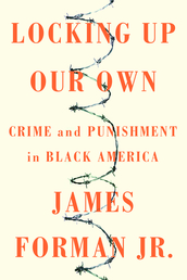 Locking Up Our Own Book Cover - Click to see book details