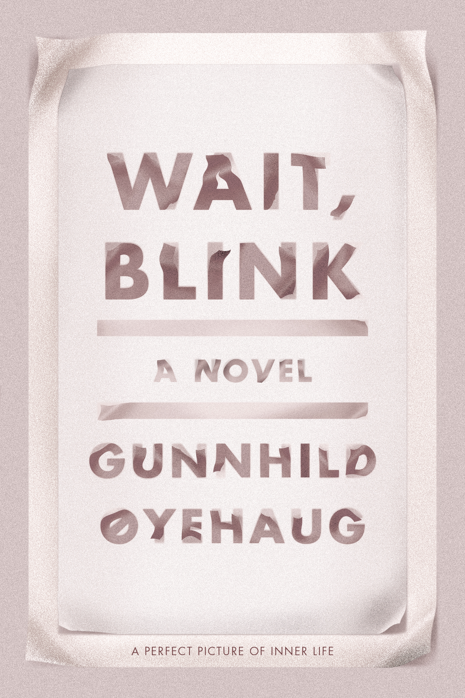 Wait, Blink Book Cover - Click to open Coming Soon panel