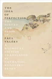 The Idea of Perfection Book Cover - Click to open Coming Soon panel