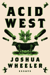 Acid West Book Cover - Click to see book details