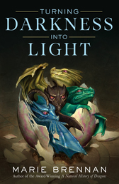 Turning Darkness Into Light Book Cover - Click to open Coming Soon panel