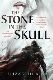 The Stone in the Skull Book Cover - Click to open Coming Soon panel