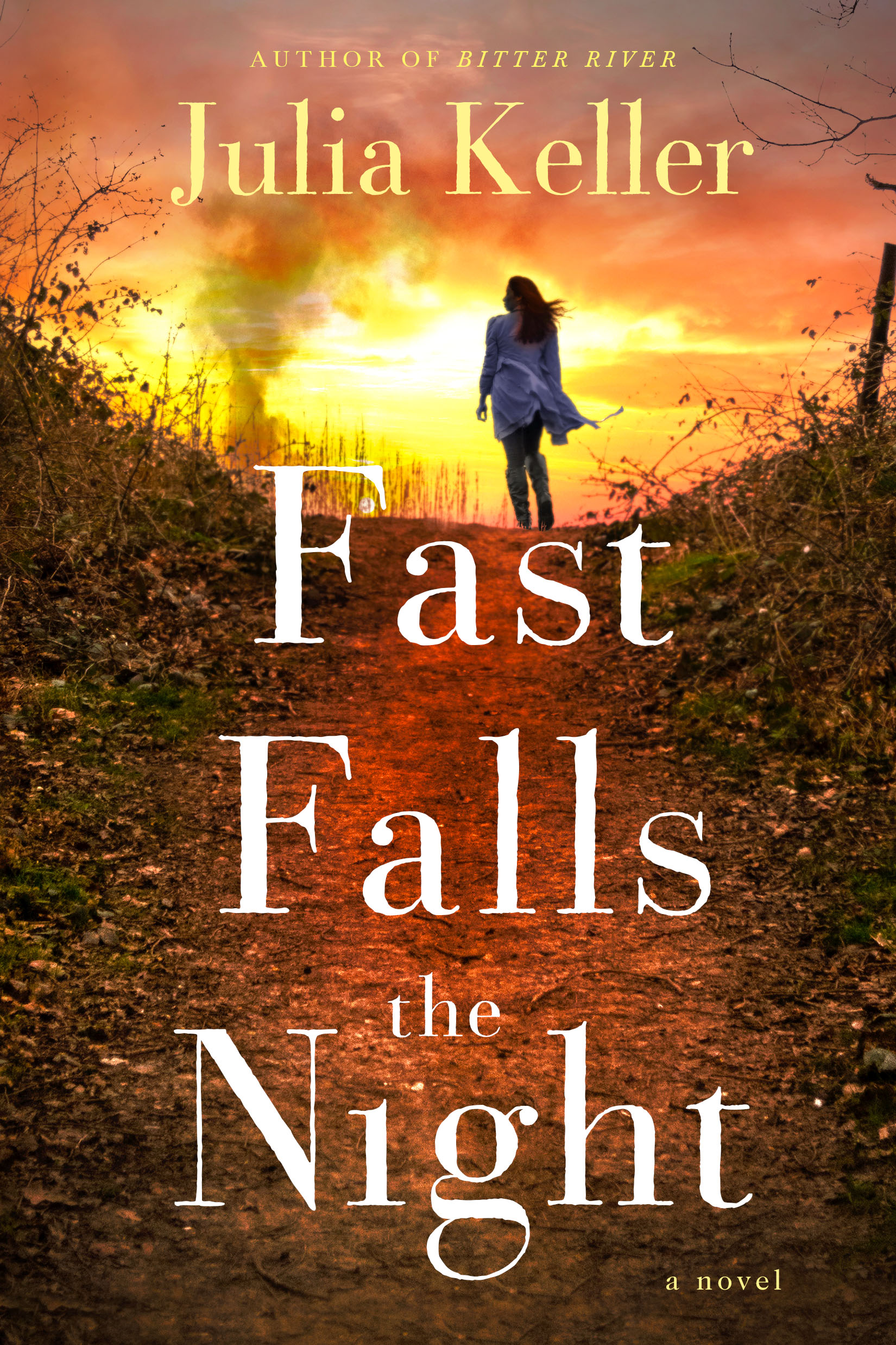 Fast Falls the Night Book Cover - Click to open New Releases panel