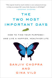 The Two Most Important Days Book Cover - Click to open New Releases panel