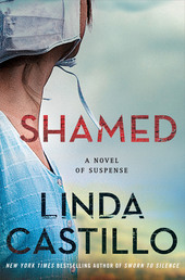 Shamed Book Cover - Click to open Top Sellers panel