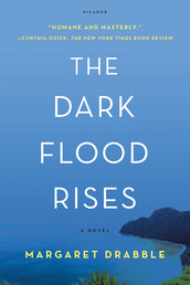 The Dark Flood Rises Book Cover - Click to open New Releases panel