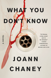 What You Don't Know Book Cover - Click to open Coming Soon panel