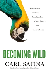 Becoming Wild Book Cover - Click to open Top Sellers panel