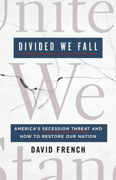 Divided We Fall Book Cover - Click to open New Releases panel