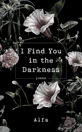 I Find You in the Darkness Book Cover - Click to open New Releases panel