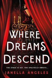 Where Dreams Descend Book Cover - Click to open Top Sellers panel