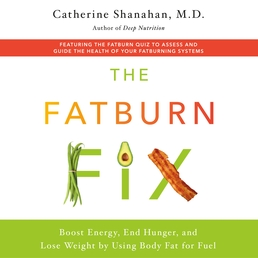 The Fatburn Fix Book Cover - Click to open Audiobooks panel