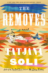 The Removes Book Cover - Click to see book details