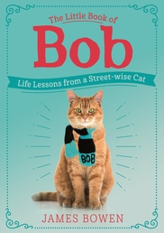 The Little Book of Bob Book Cover - Click to open Coming Soon panel