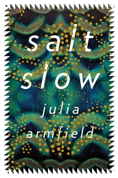 salt slow Book Cover - Click to open New Releases panel