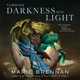 Turning Darkness Into Light Book Cover - Click to open Audiobooks panel