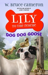 Lily to the Rescue: Dog Dog Goose Book Cover - Click to open Coming Soon panel