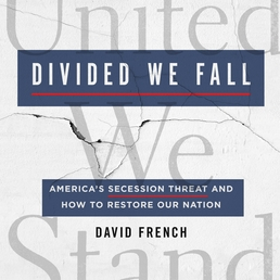 Divided We Fall Book Cover - Click to open Coming Soon panel