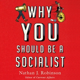 Why You Should Be a Socialist Book Cover - Click to open Audiobooks panel