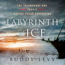 Labyrinth of Ice Book Cover - Click to open Audiobooks panel