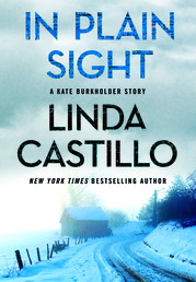 In Plain Sight Book Cover - Click to open Coming Soon panel