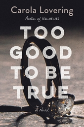 Too Good to Be True Book Cover - Click to open Top Sellers panel