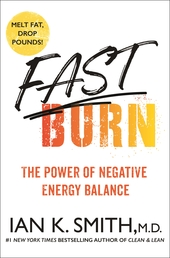 Fast Burn! Book Cover - Click to open New Releases panel