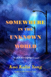 Somewhere in the Unknown World Book Cover - Click to open Metropolitan Books panel