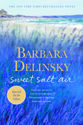 Sweet Salt Air Book Cover - Click to see book details