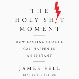 The Holy Sh!t Moment Book Cover - Click to open Audiobooks panel